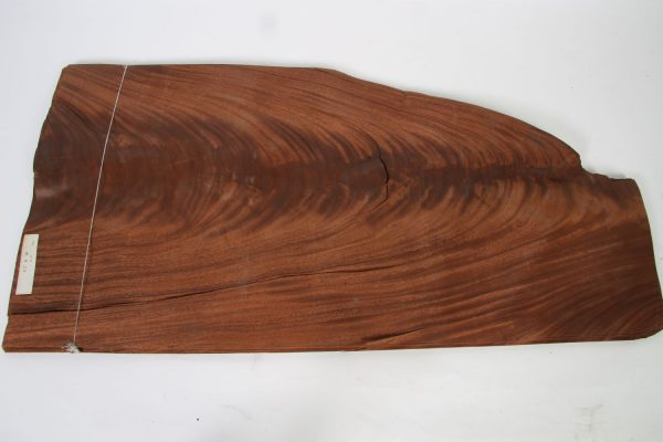 L 106 cm x B 50 cm 24 bladen