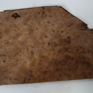 L 35 cm x B 25 cm 10 bladen