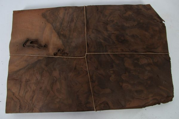 L 46 cm x B 31 cm 41 bladen