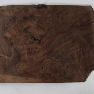 L 48 cm x B 37 cm 21 bladen