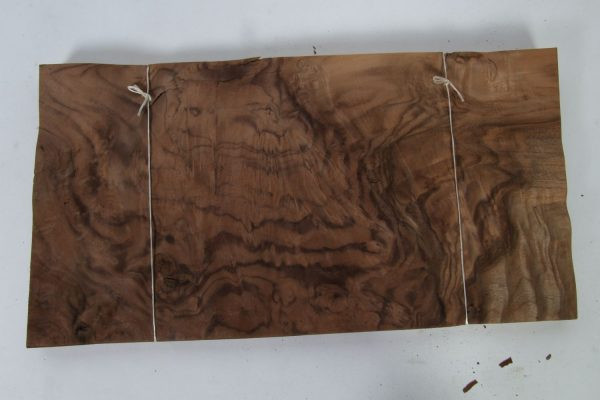 L 49 cm x B 26 cm 31 bladen