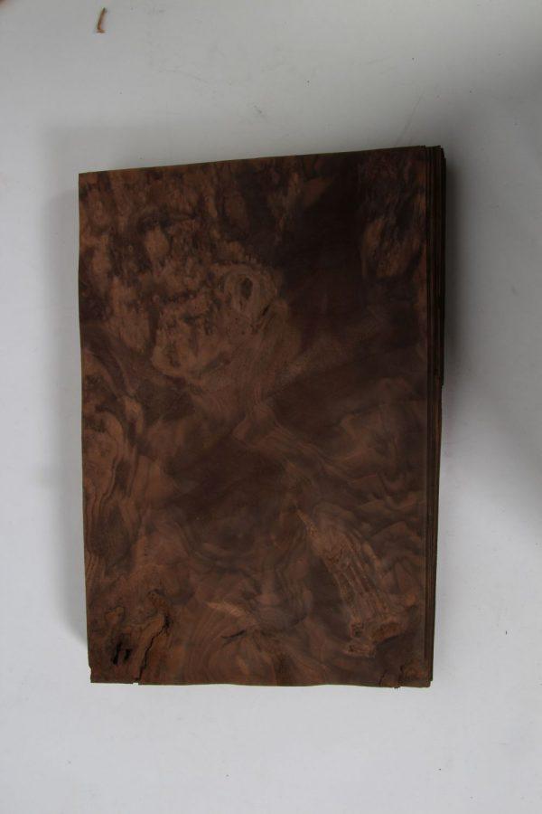 L 36 cm x B 24 cm 42 bladen