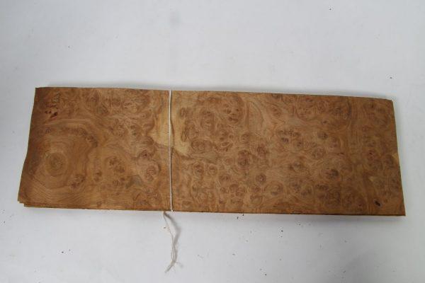 L 60 cm x B 19 cm 11 bladen